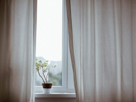 Large window with a plant and curtains